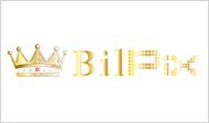 Bilpix